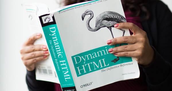 Software Development Services - Divbyte - Reliable Partner